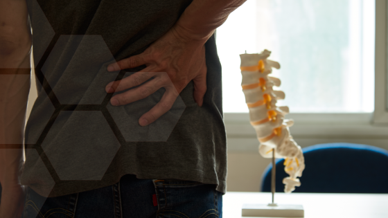 Everything You Need to Know About Intervertebral Discs